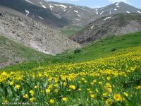 برگزاری اولین برنامه گروه کوهنوردی نظام مهندسی میانه